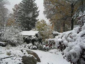 nov-snow.jpg